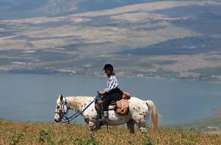 Ramot Ranch