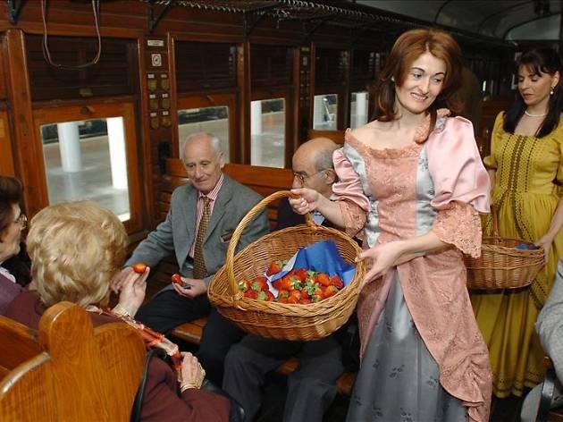 El tren de la fresa