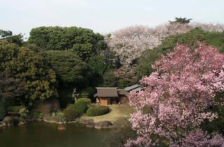 春の庭園開放