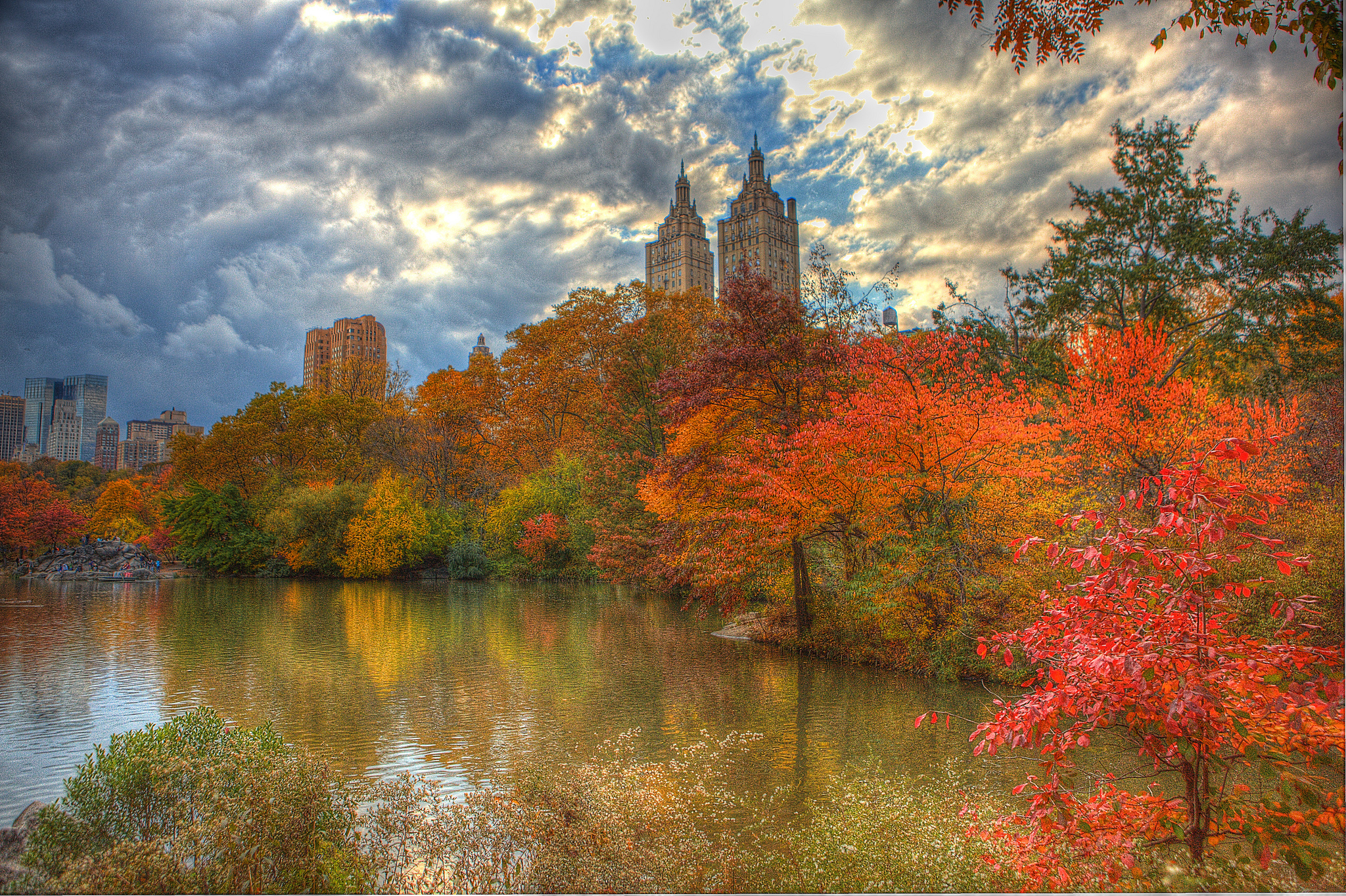 The fall foliage around NYC is going to suck this year