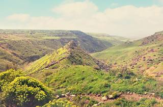 Gamla National Park