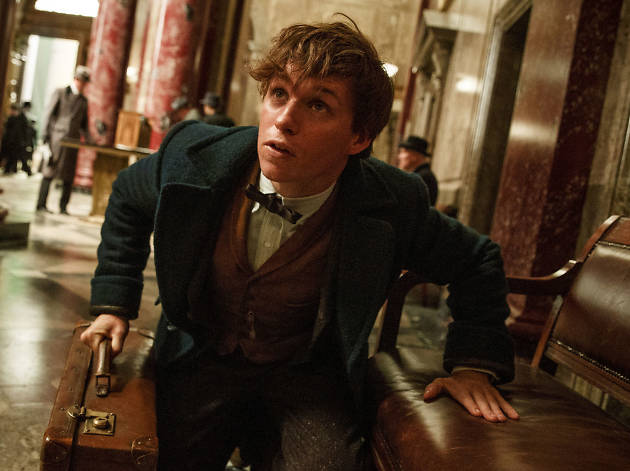 Everything you need to know about 'Fantastic Beasts and Where to Find Them'