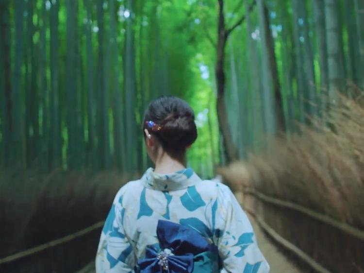 Kimonos and tea ceremonies – explore traditional Kyoto