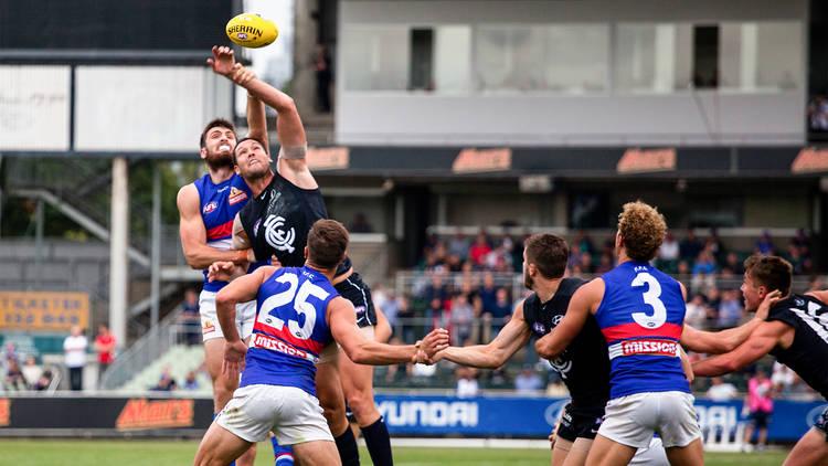 Western Bulldogs vs Carlton AFL