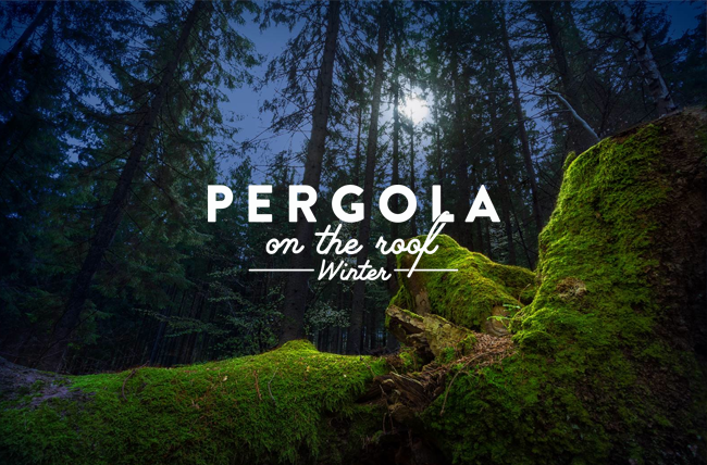 Pergola on the Roof is back for winter with a new Nordic forest vibe