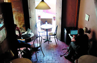 Café tal en Guanajuato