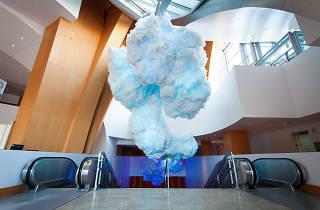 A surreal cloud installation has floated into the Walt Disney Concert Hall