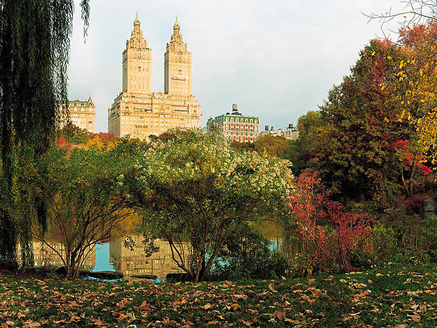 1e71a24c137 20 fantastic things to do in NYC this week
