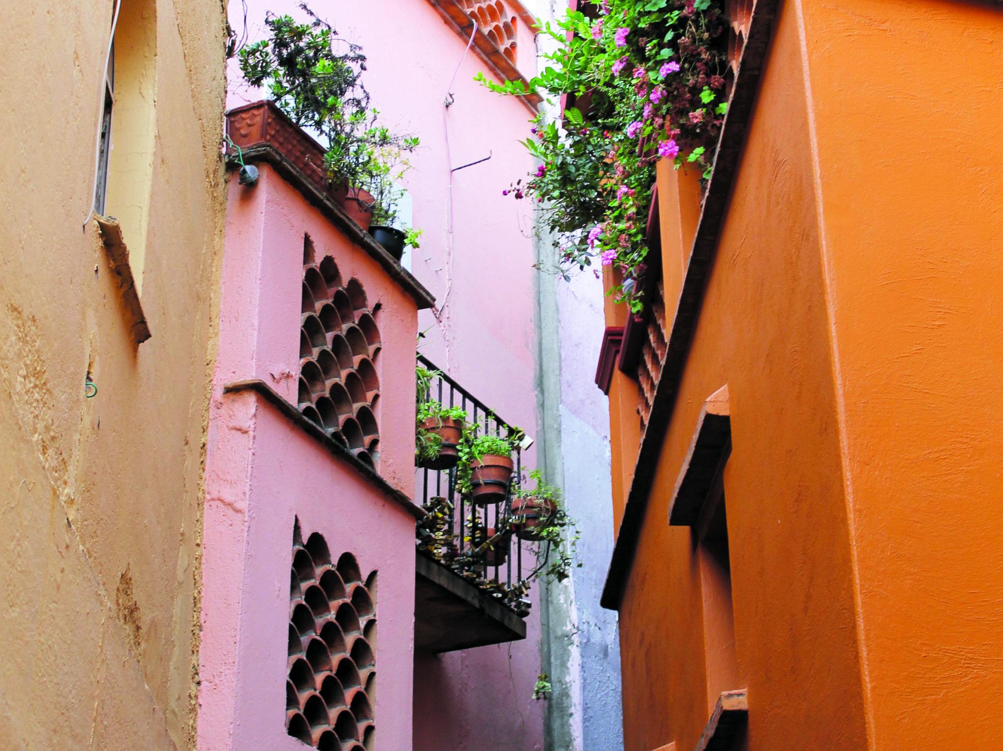 24 horas en Guanajuato