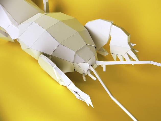 Gryllotalpa-Papier Atelier (©DR)