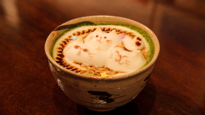 Drink a cup of cat coffee...