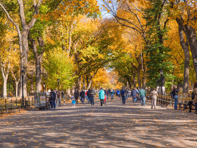 The six most romantic fall walks in NYC
