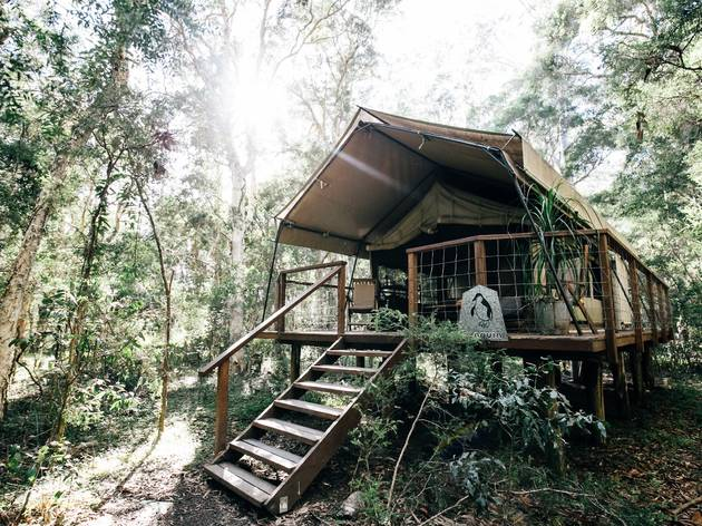 Original Safari at Paperbark Camp, Jervis Bay