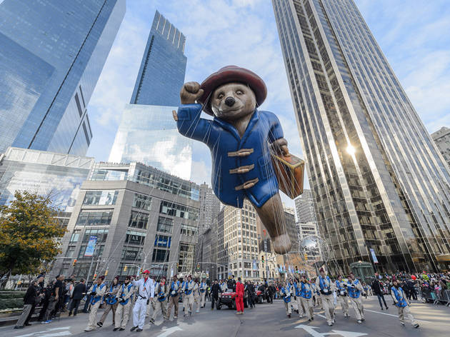 2015, Paddington Bear