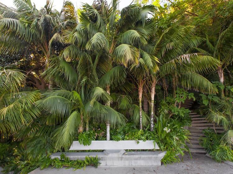 Acres of tropical gardens