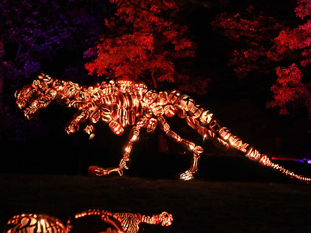 Here's what we saw at the magical Great Jack O'Lantern Blaze