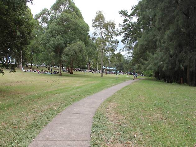 Walking path at Tench Reserve