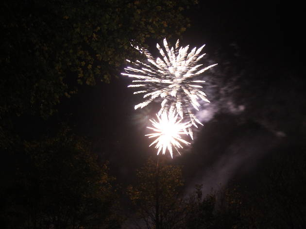 Wildfire Bonfire and Fireworks