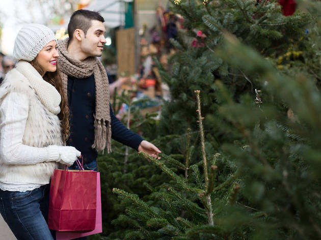 Every Christmas tree store worth going to in New York
