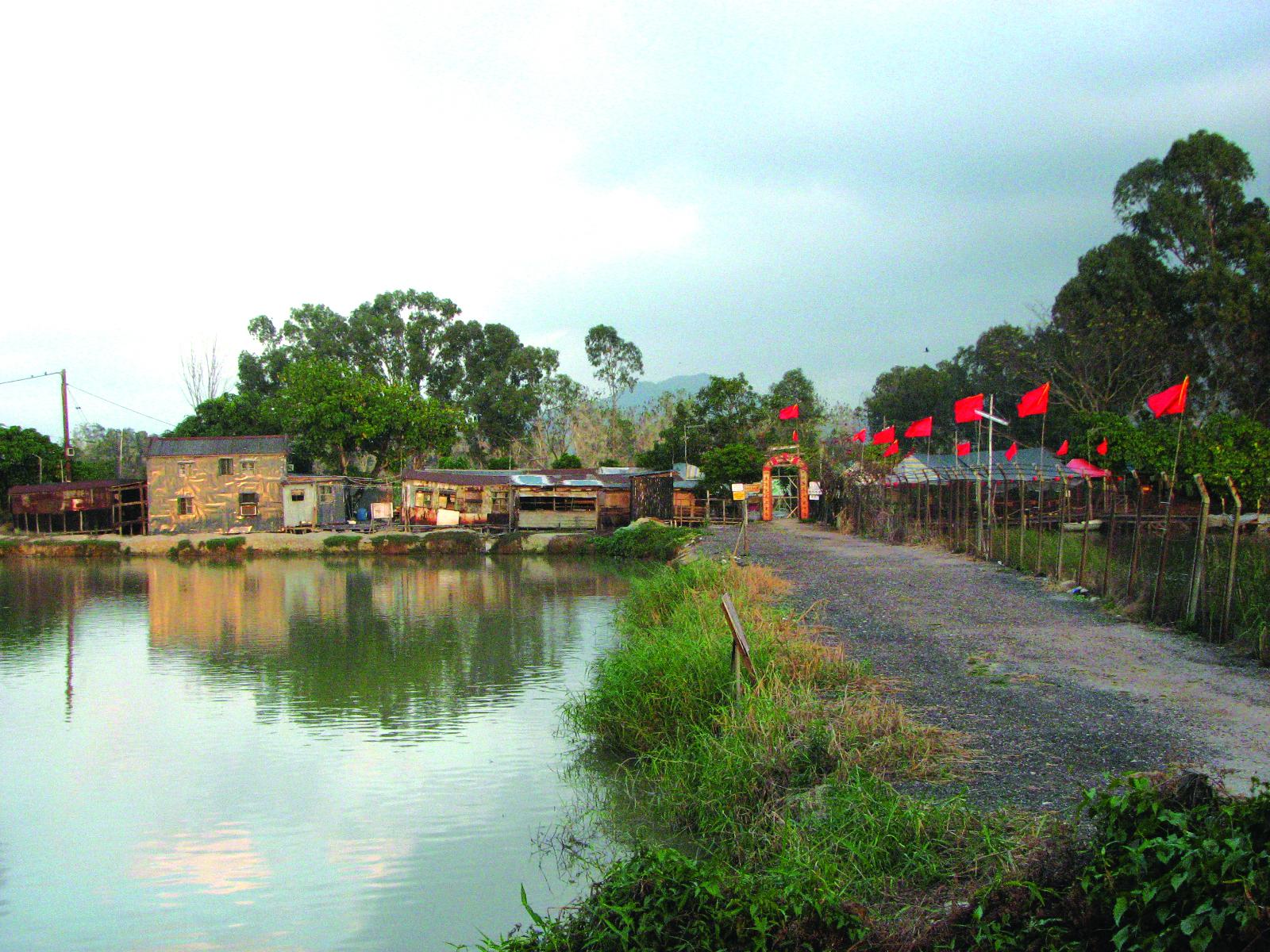 Nam Sang Wai