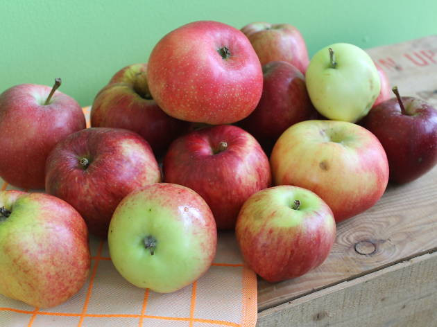 The Village Butty's Apple Day