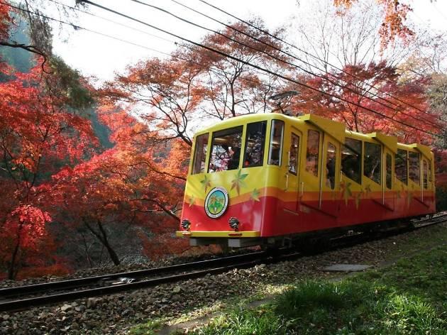 週末は高尾山へ通う。