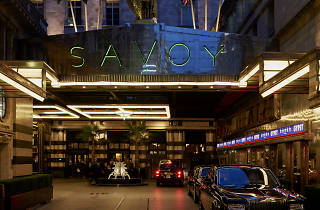 Savoy, 2016 competition