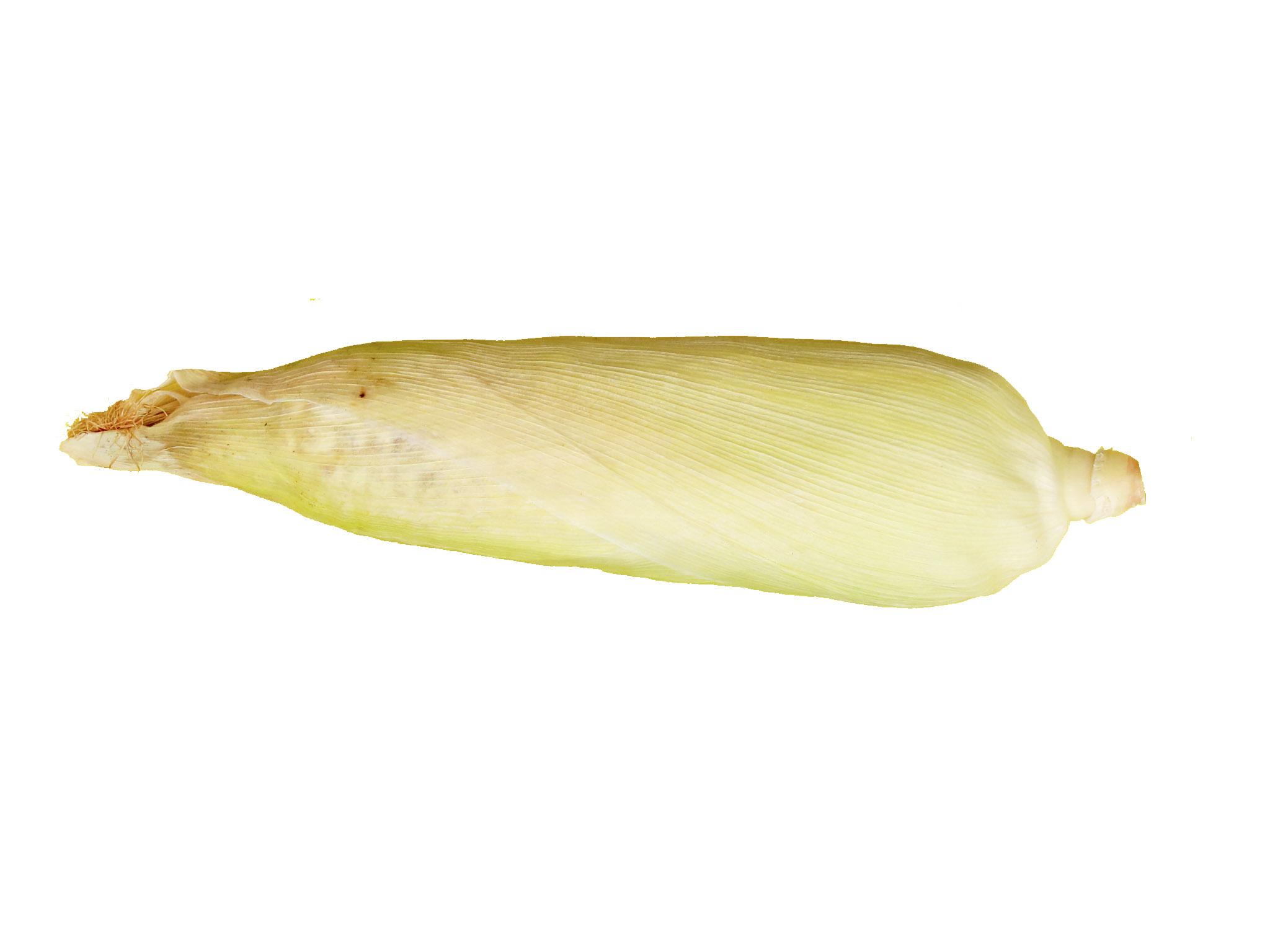 Maçaroca de milho