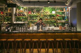 Finn Karaköy'ün barı