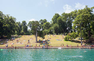 Barton Springs Queer Night Swim