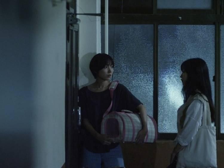 [코리아 프라이드 섹션] 두유 테이크 디스 캣?