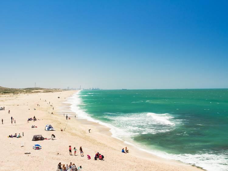 Пляж Пальмахим