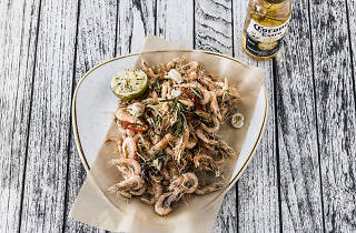 A plate of fried school prawns with a Corona beer