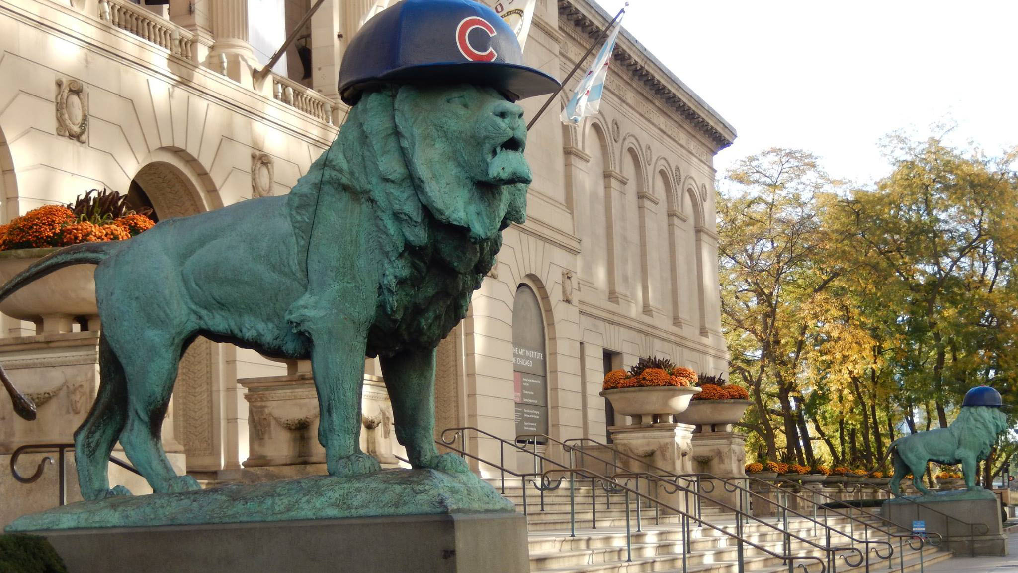 The Art Institute lions got their very first Cubs hats