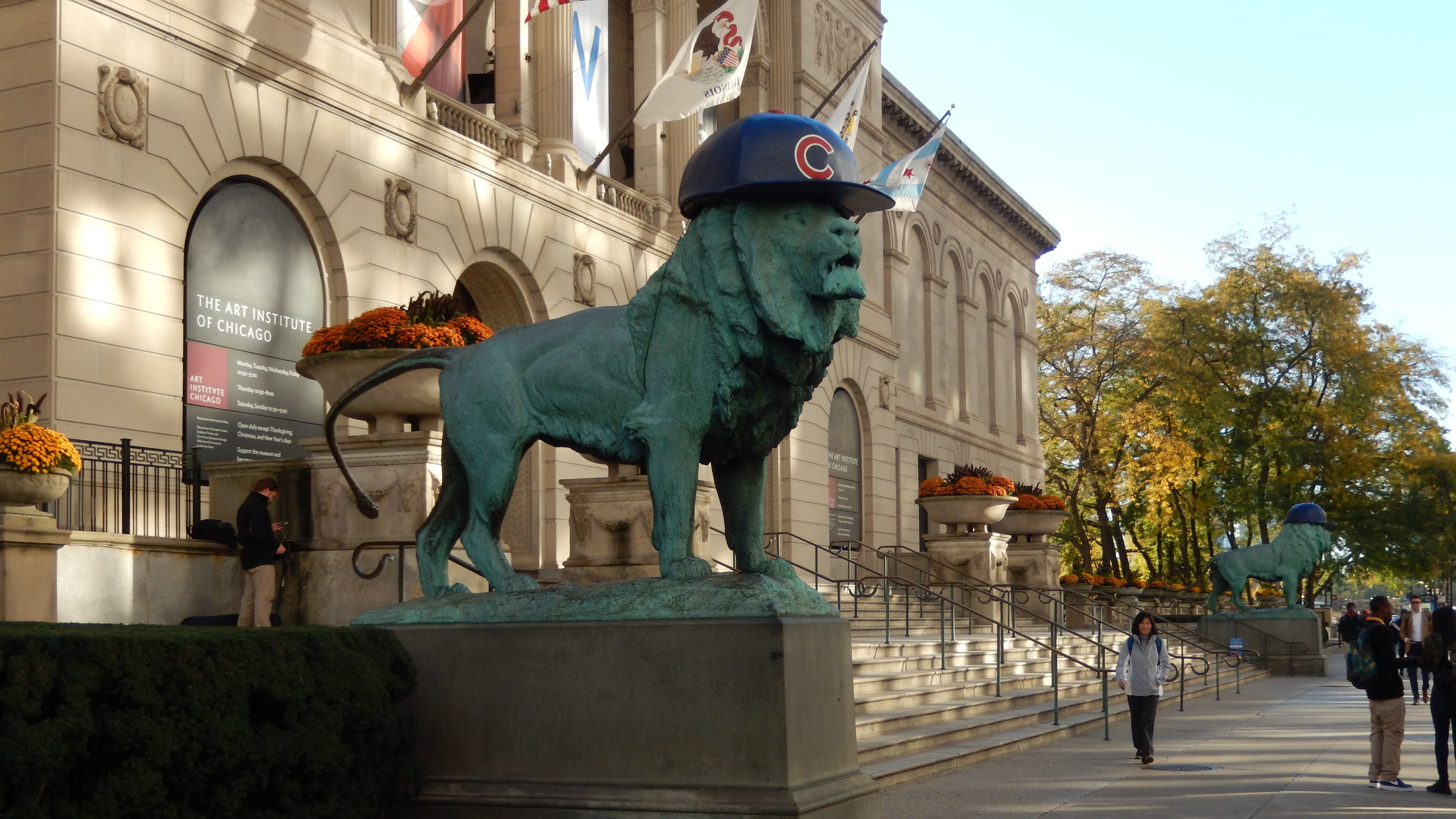 80d4795b9bc The Art Institute lions got their very first Cubs hats