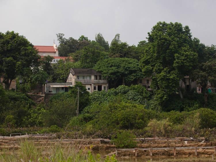 All ghoul fun: Visit 'Ghost Island', Yim Tin Tsai