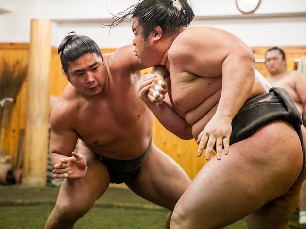 Guide to sumo in Tokyo