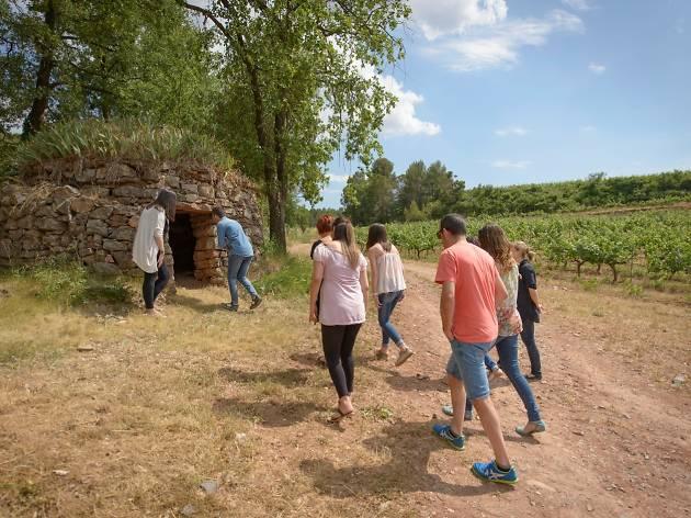 Abadal Ruta Barraques Vinya