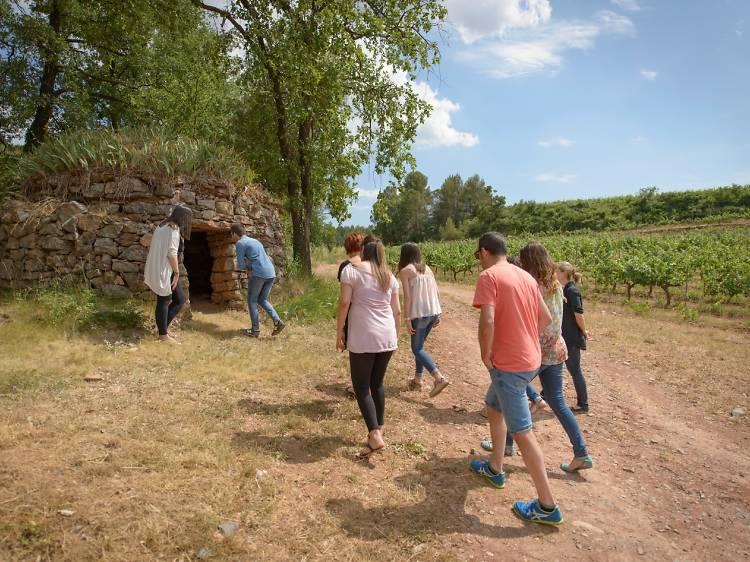 Dia 2: les barraques de vinya