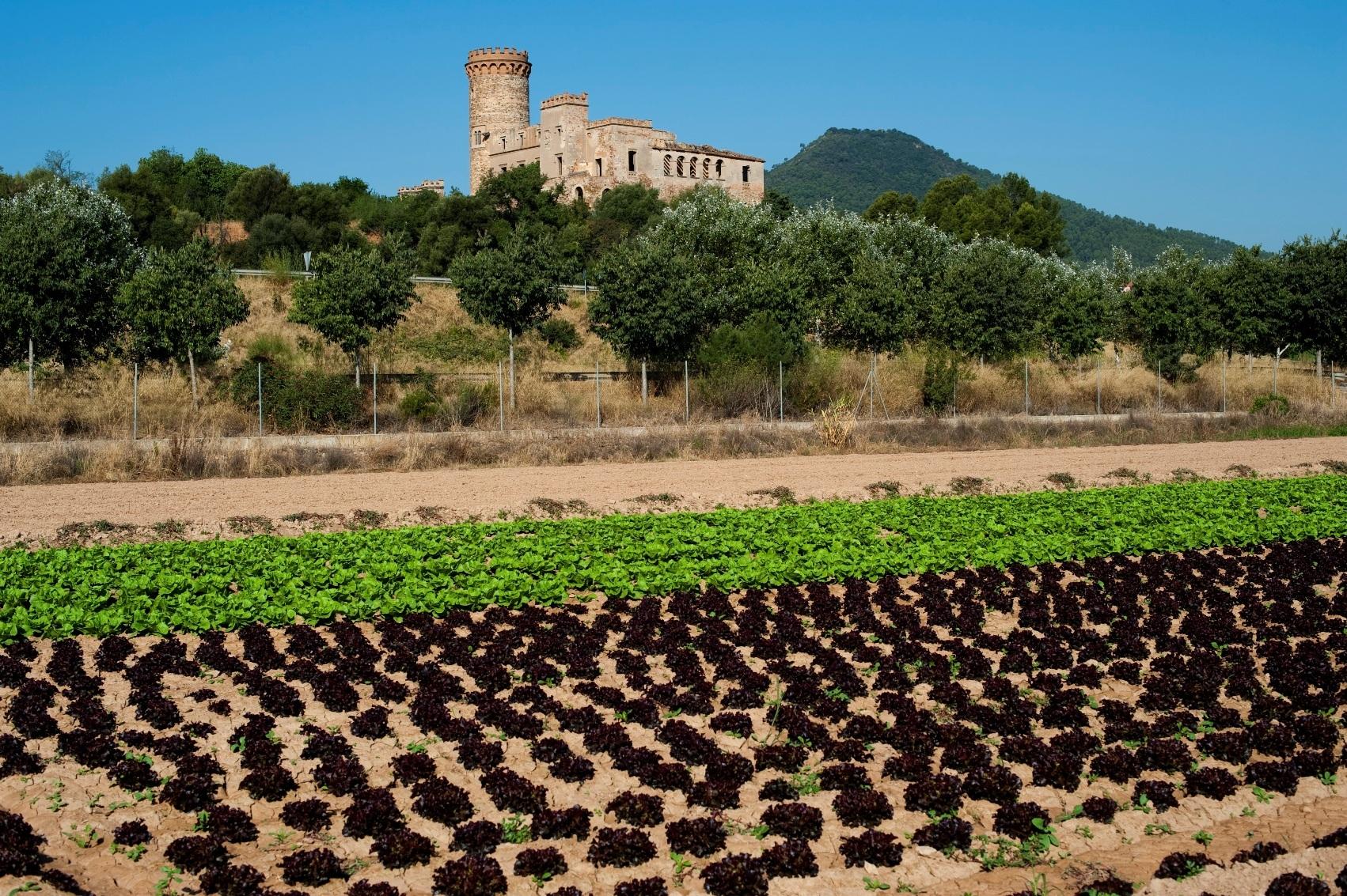 Parc Agrari del Baix Llobregat
