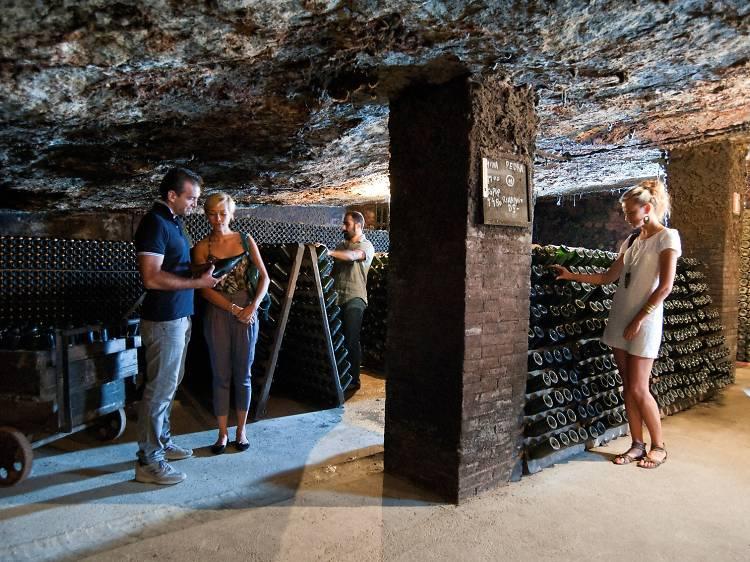 Dia 3: el museu del vi