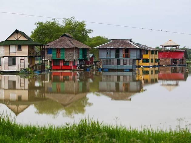 Kahang Organic Rice Eco Farm (Kluang, Johor)