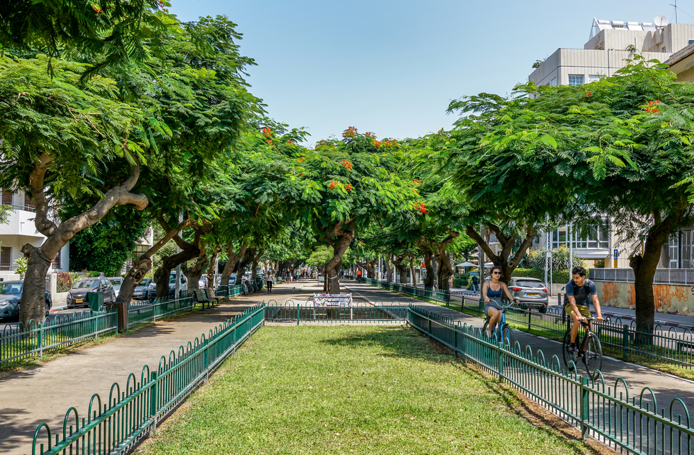 A stroll down Rothschild Boulevard