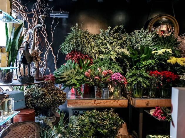 As melhores floristas em Lisboa