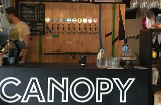 Canopy Beer Tap Room, 2016