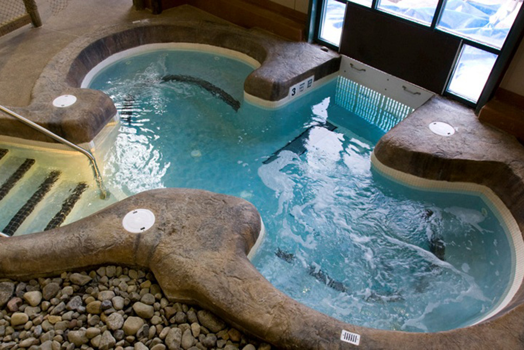 Cascades Indoor Waterpark at Hope Lake Lodge