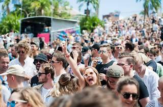 Crowds at Laneway Festival