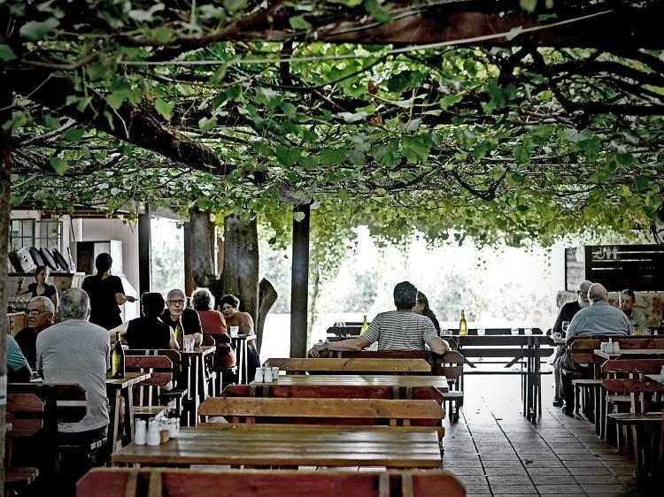 Tishbi Estate Winery