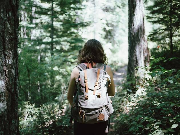 Woman on a hike, with her back to camera