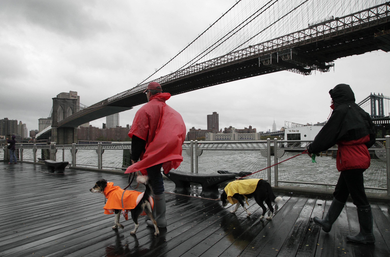 New York could be looking at a bad hurricane season this year